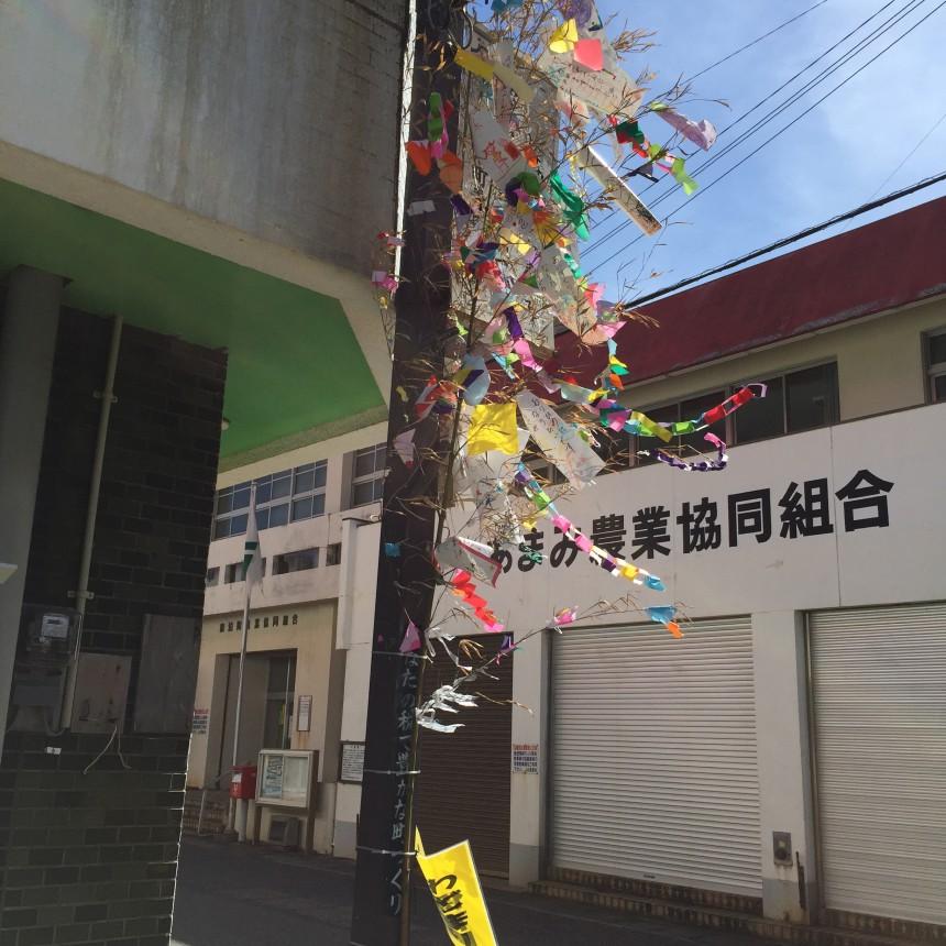 H27年7月7日☆七夕 商店街